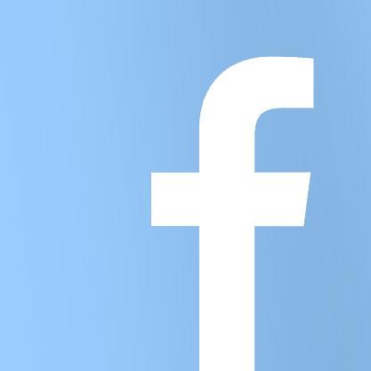 Adore Ragdoll Breeder Facebook